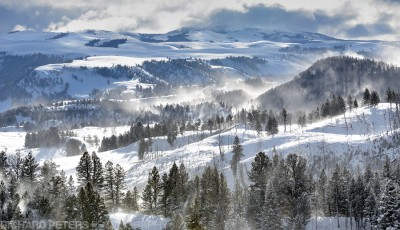 Welcome to the snow covered valleys of Yellowstone