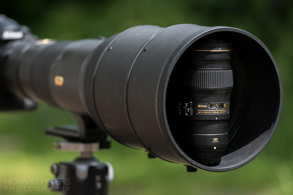 Nikon 300mm f4 PF review: the death of super telephotos