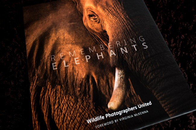 The Remembering Elephants book