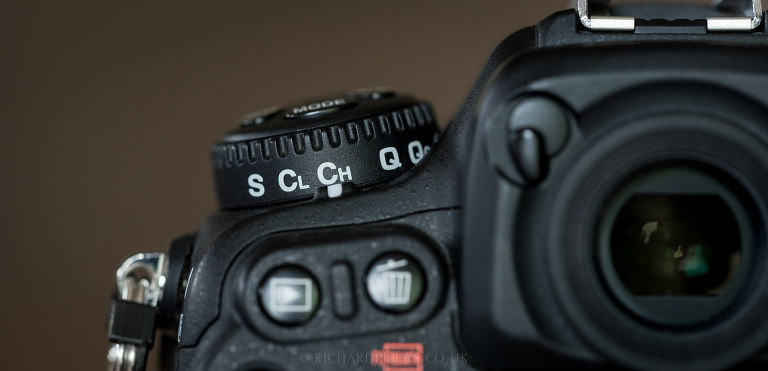5 camera settings to improve your wildlife photography | Richard