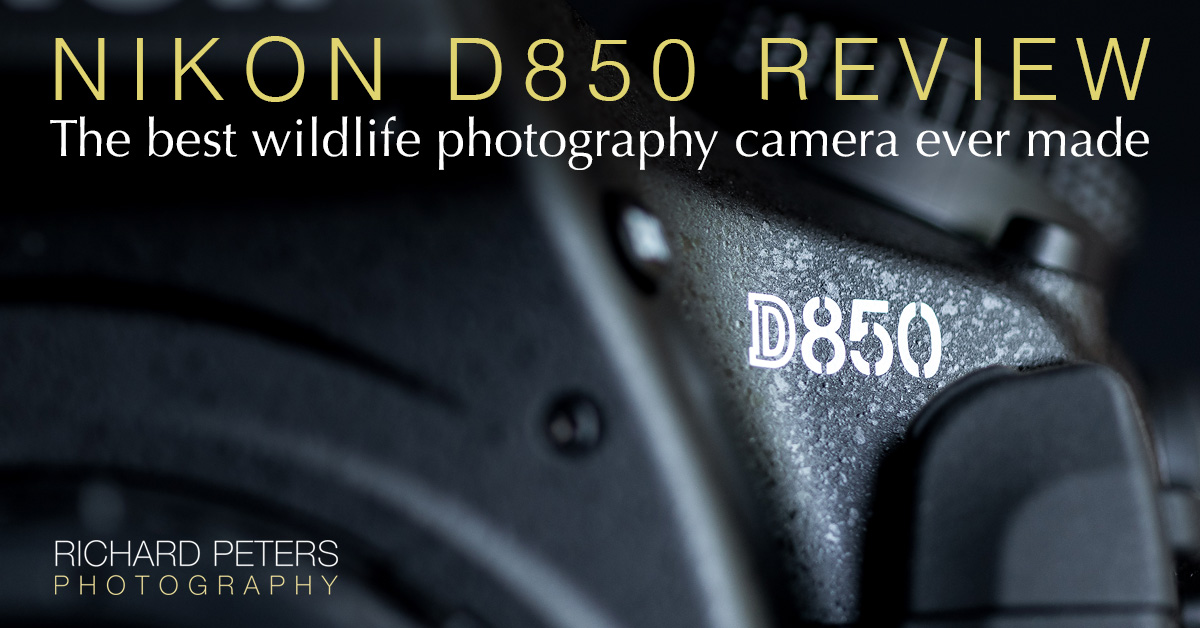 Nikon D850 review. The best wildlife photography camera ever made. | Richard Peters Wildlife Photography
